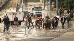 Gürcistan'daki sel mağdurları evraklarını ücretsiz olarak alabilecek