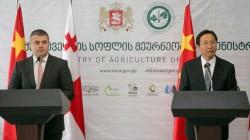 Gürcistan Çin'den yardım alacak
