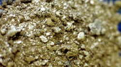 Adıgey'de altın aranacak