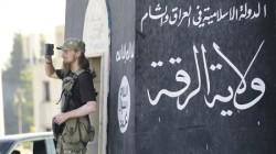 Bir Dağıstanlı IŞİD'i terk etti