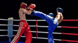 Kabardey-Balkarlı kickboksçular beş altın madalya kazandı