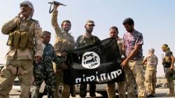22 Adıgeyli Suriye'de savaşıyor