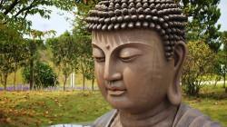 Dağıstanlı güreşçi Buda heykeline saldırdı