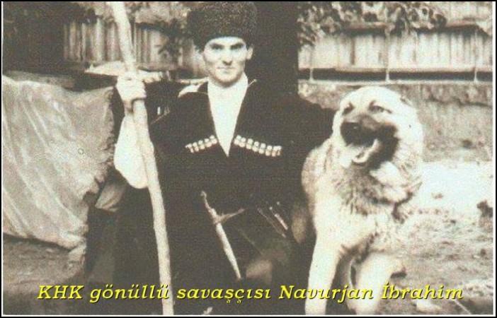 navurjanibrahim