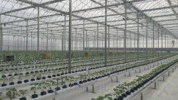 Türk yatırımcılar Dağıstan'da tarım makineleri tesisi kuruyor