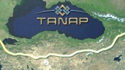 TANAP projesi Türkiye ve Azerbaycan'ı yakınlaştırmaya devam ediyor