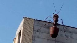 Vladikavkaz'daki dev karınca maketi dikkat çekiyor