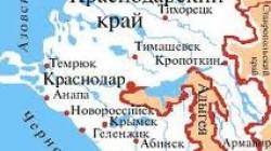 Adıge Hase: Timur Aşinov'un katilleri derhal bulunsun