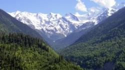 Kafkasya'da kişi başına düşen ormanlık alan dünya ortalamasının gerisinde