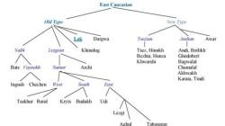 Dağıstan'da 'diller kanunu' tasarısı görüşüldü