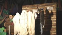 Osetçe Kırmızı Başlıklı Kız Tshinval'de sahneye konuldu