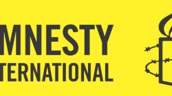 Af Örgütü: Kafkasya'da yargısız infaz, işkence ve insan kaçırma suçları devam ediyor