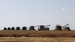 Kabardey-Balkar'da ithal ikamesi desteği alacak tarım kuruluşları belirlendi